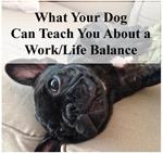 Work Life Balance tumbnail