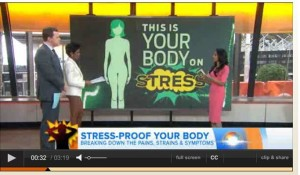 Your Body and Stress